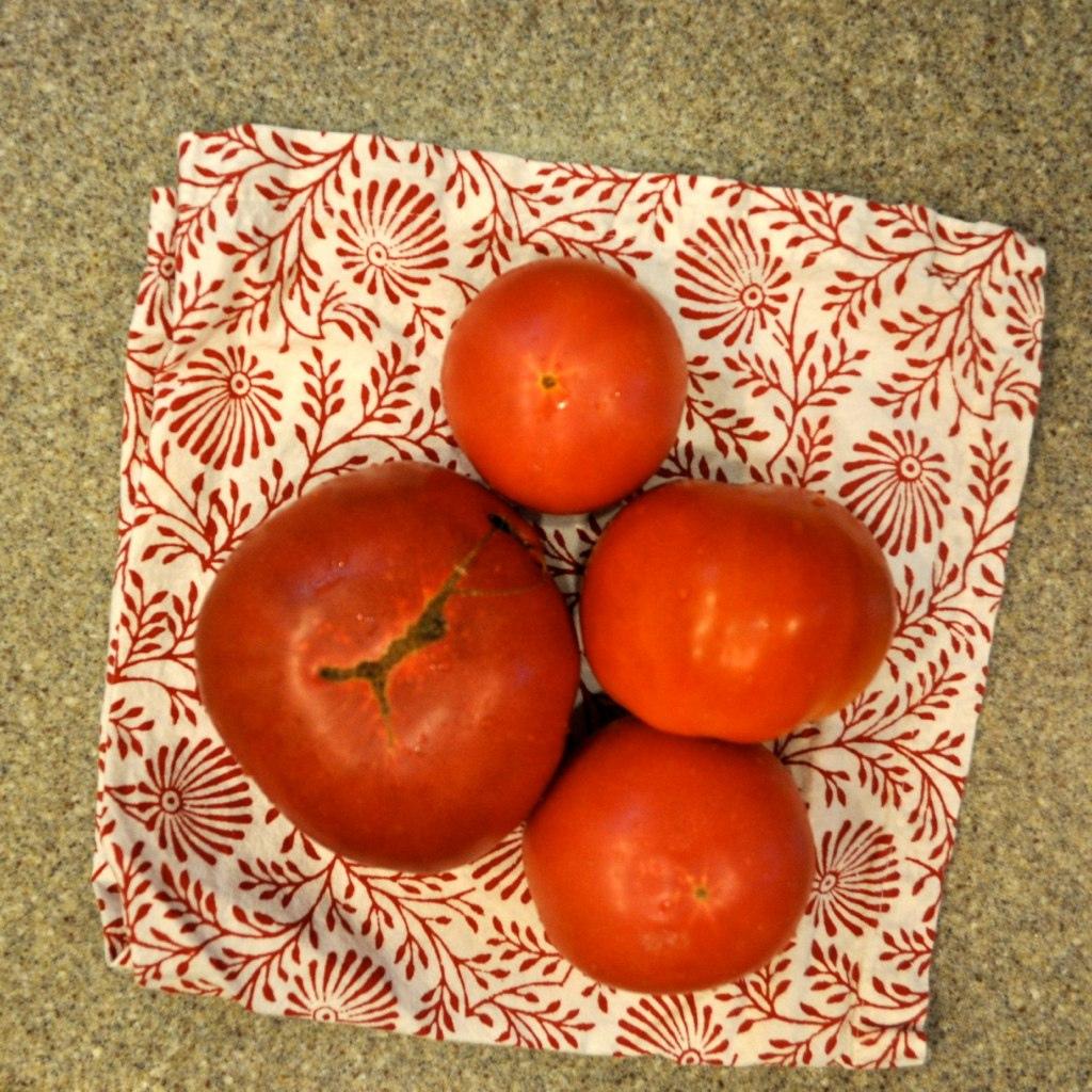 Enter the Tomato