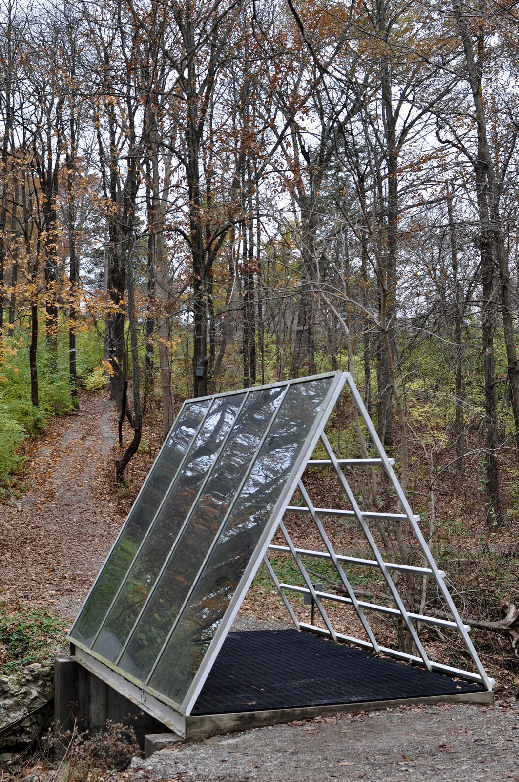 Laumeier Sculpture Park in Autumn